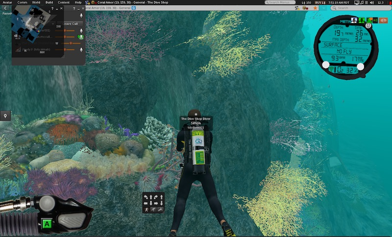 Second Life coral reef