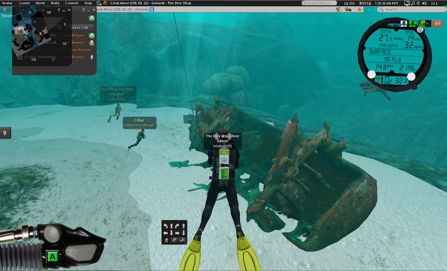 Second Life wreck